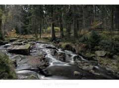 """Harz- Impressionen """"entlang der  kleinen Bodefälle """""""