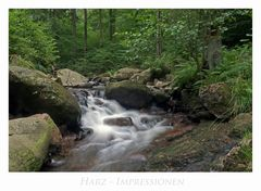 """Harz - Impressionen """" entlang des ILsetals...."""""""