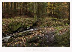 """Harz - Impressionen """" im Eckertal...."""""""