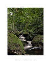 "Harz - Impressionen "" im ILsetal..."""