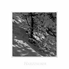 """Harz- Impressionen """" Licht und Schatten...."""