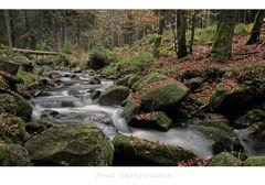 "Harz- Impressionen "" Warme - Bode """