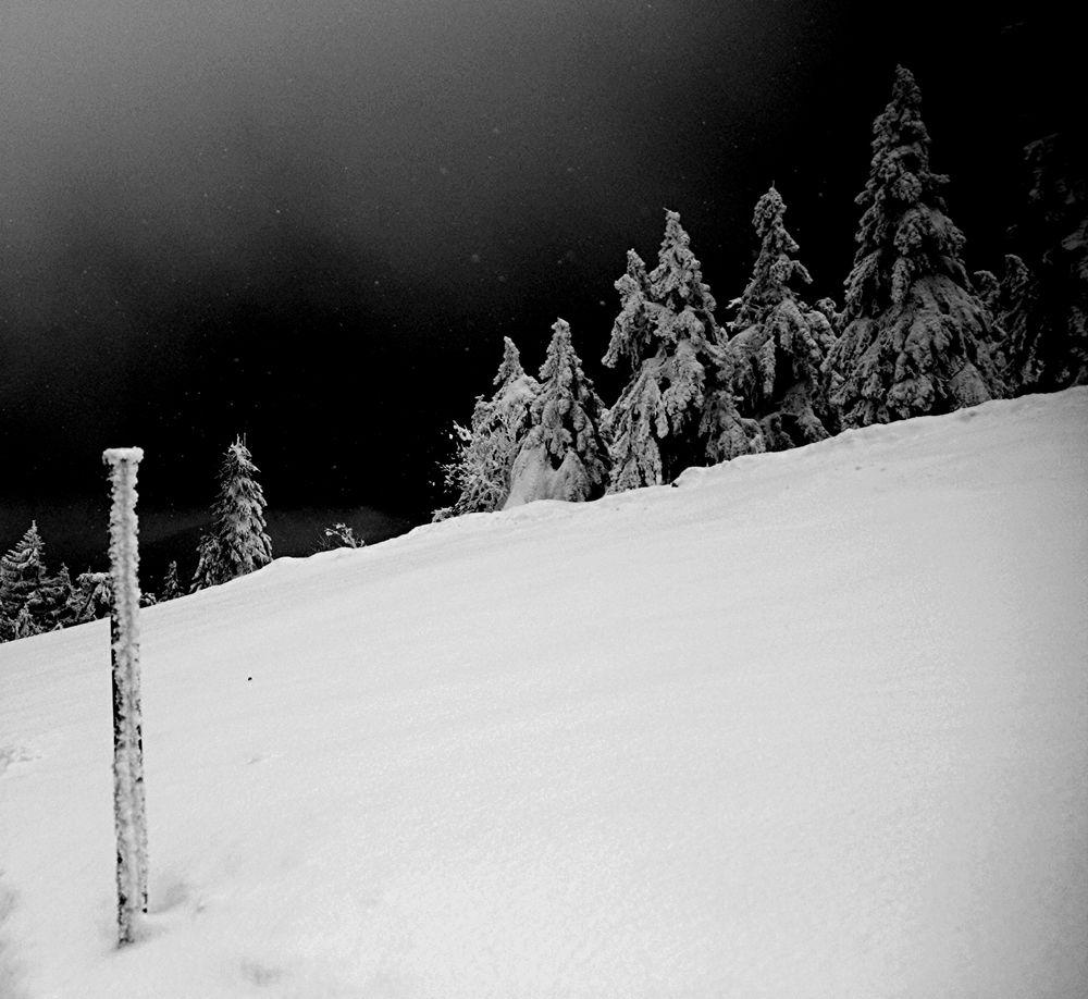 Harz10°-