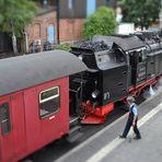 Harzer Schmalspur Bahn in Wernigerode (1)
