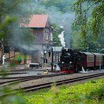 Harzer Schmalspurbahn in Alexisbad