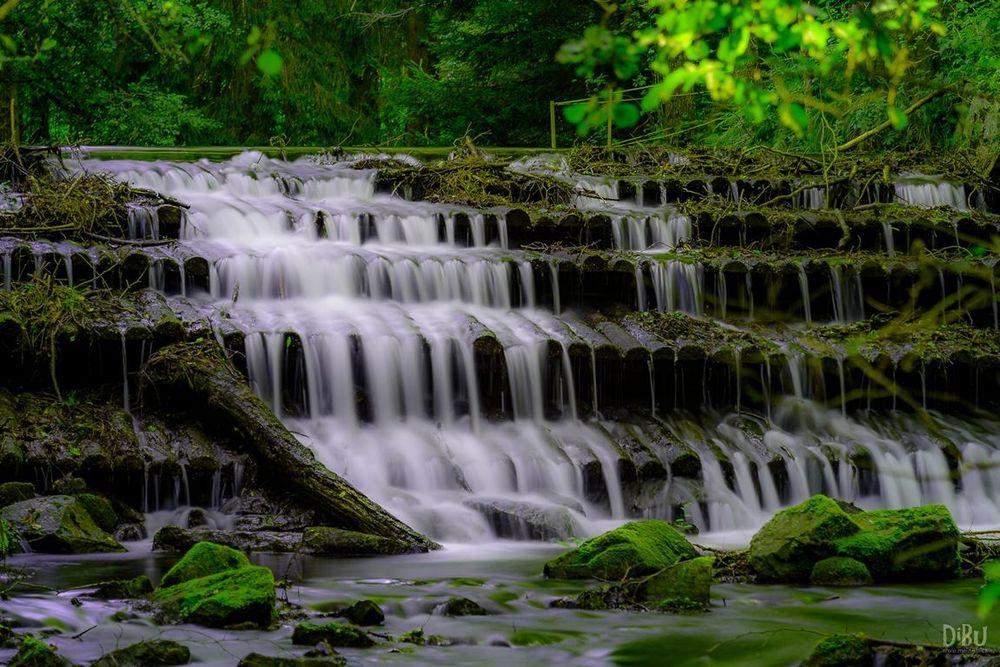 Harzerwasser