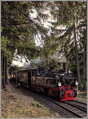 """Harzimpressionen """" Auf den Spuren der Harzer Schmalspurbahn*..."""""""