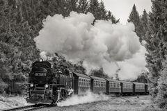 Harzquerbahn, 99 7245-6