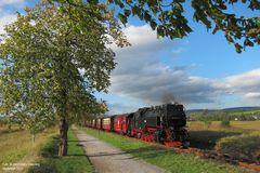 Harzquerbahn . Kastanienzeit
