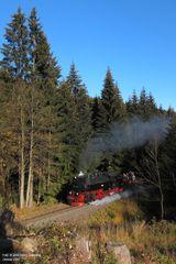 Harzquerbahn . Sophienhof