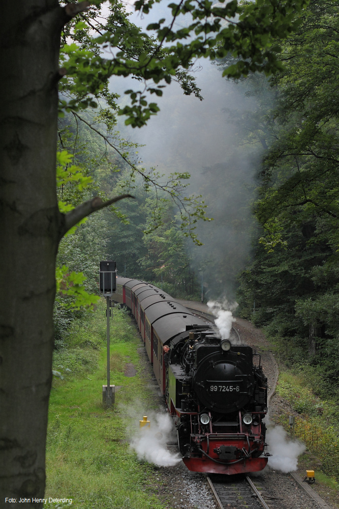 Harzquerbahn . Steinerne Ausfahrt