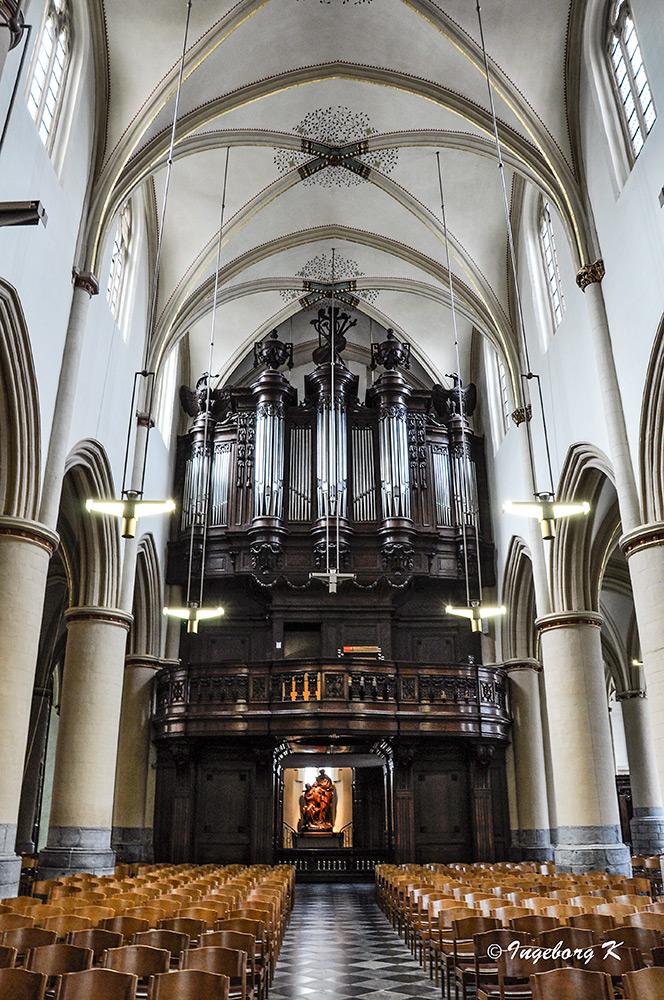 Hasselt - St. Quintinius-Kathedrale - Orgel