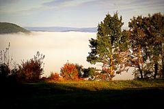 Haßlachtal im Morgen-Nebel