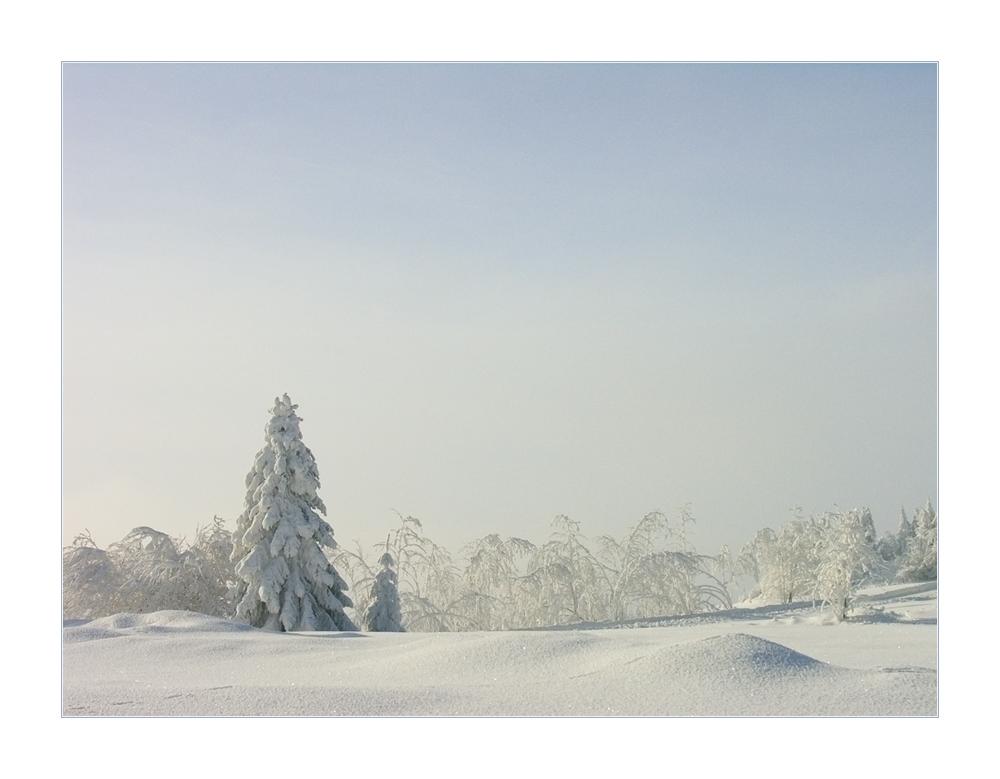 ...hauchfeines Winterpastell... - oder: Winter adé... !