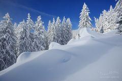 Haufenweise Schnee