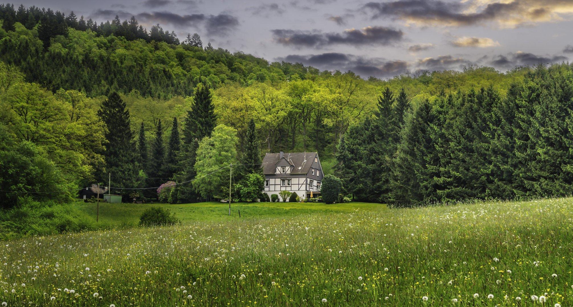 Haus am Waldrand Foto & Bild