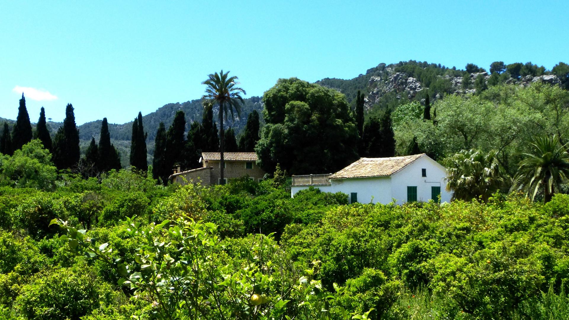 Haus bei Soller