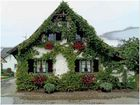 Haus im Breisgau (Kaiserstuhl)