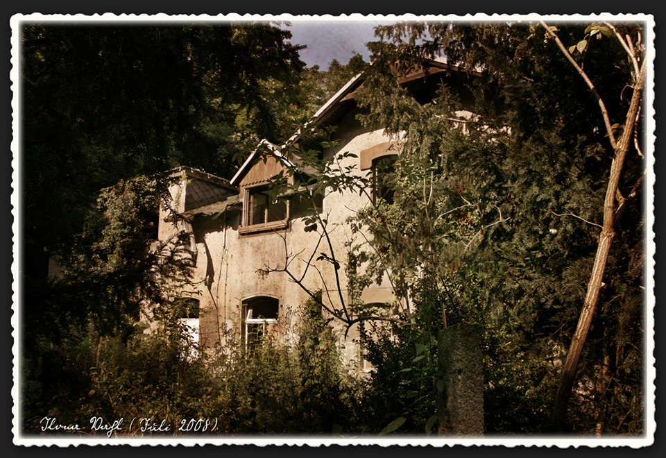 Haus unter Bäumen