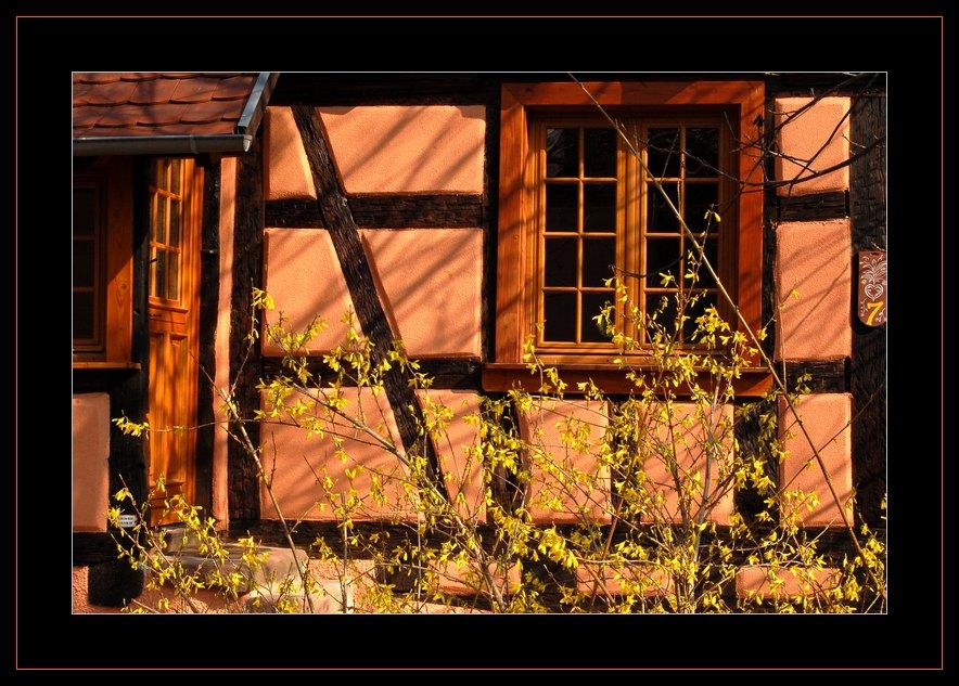 Hausfront in Dambach-la-Ville (Bas-Rhin)