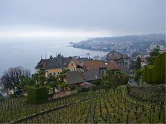 Hauteurs de Montreux