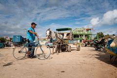Havanna 2019 - Einkauf auf dem Markt