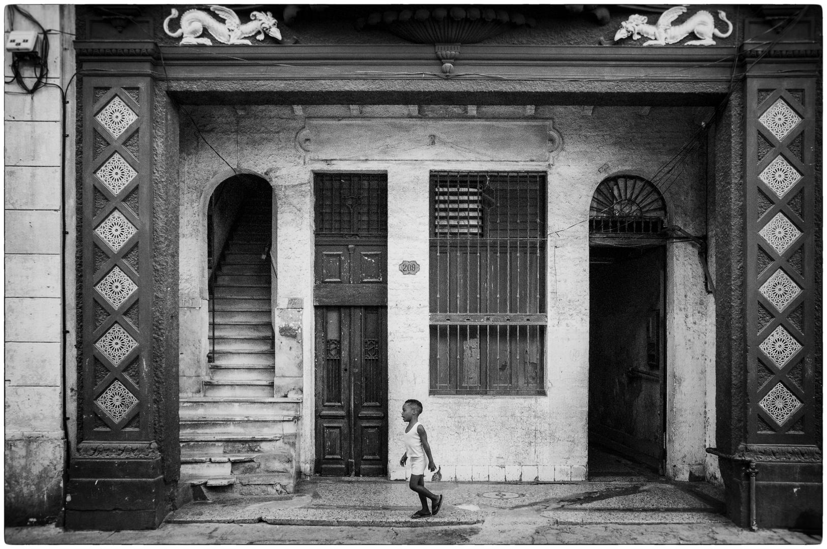 Havanna N°44