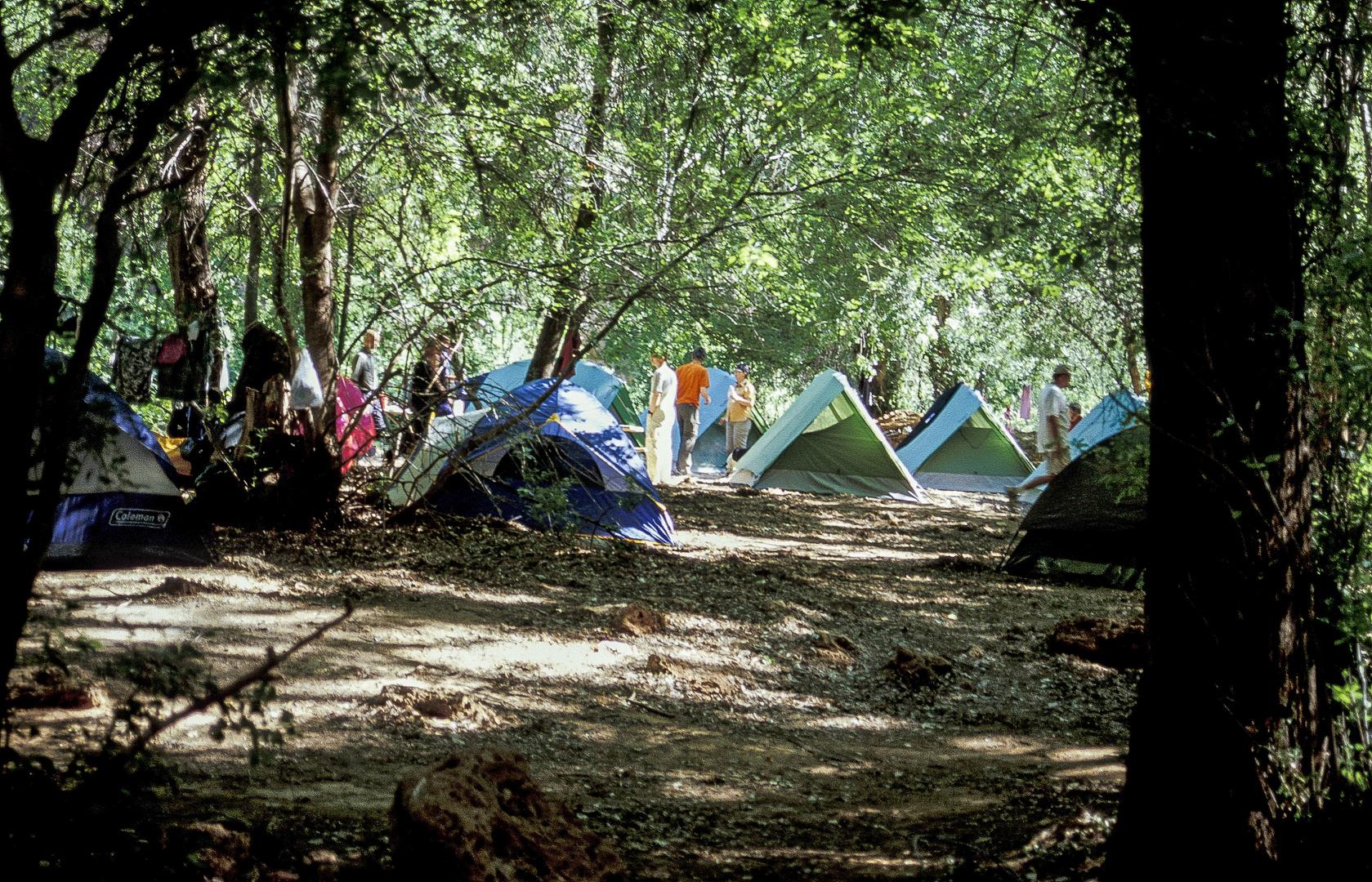 Havasu Campground