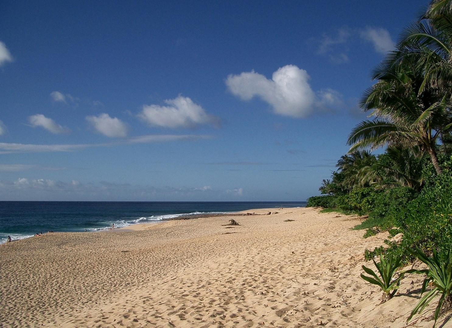 Hawai O'ahu - Nordstrand