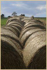haybales above millfield 4