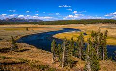 Hayden Valley, Yellowstone River Schleife, Wyoming, USA