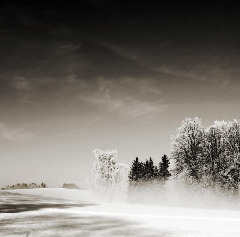 haze of the dawn