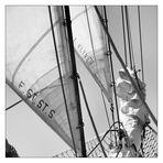 head sails .II.
