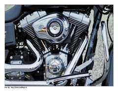 Heart of a Harley