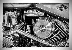 Heart of a Harley II