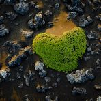 ~ Heart of Iceland ~