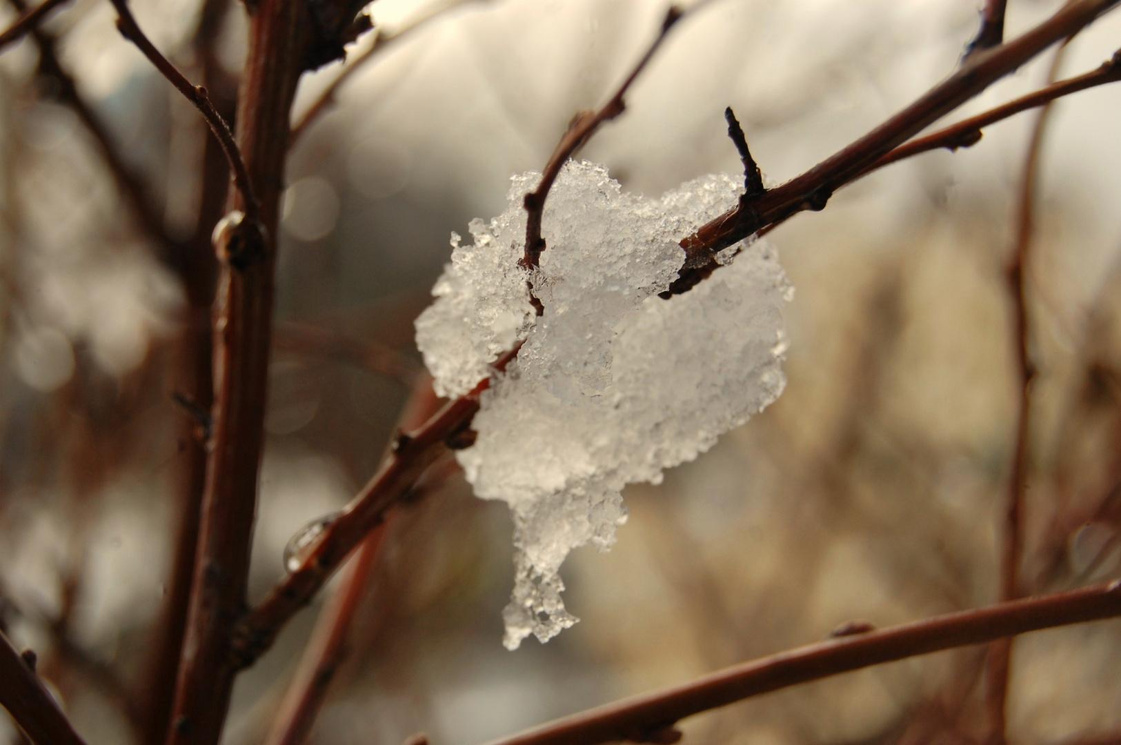 Heart of snow.