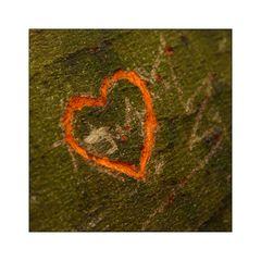 HEARTS! #14