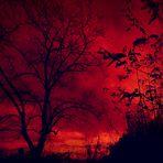heaven shall burn ...