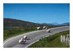 Hebridean Tour: Evening Traffic - Abendverkehr