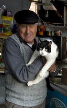 Hector und seine Katzen ...