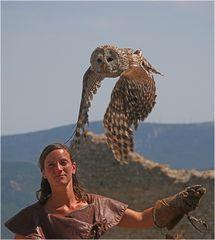 Hedwig hebt ab