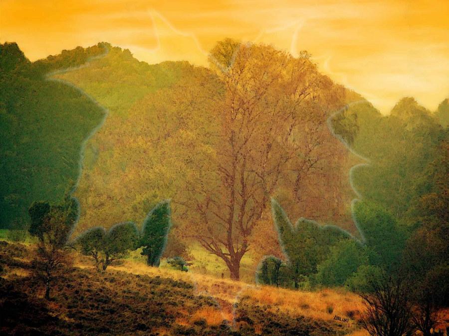 Heide-Landschaft im Herbst!