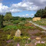 Heidegarten 2