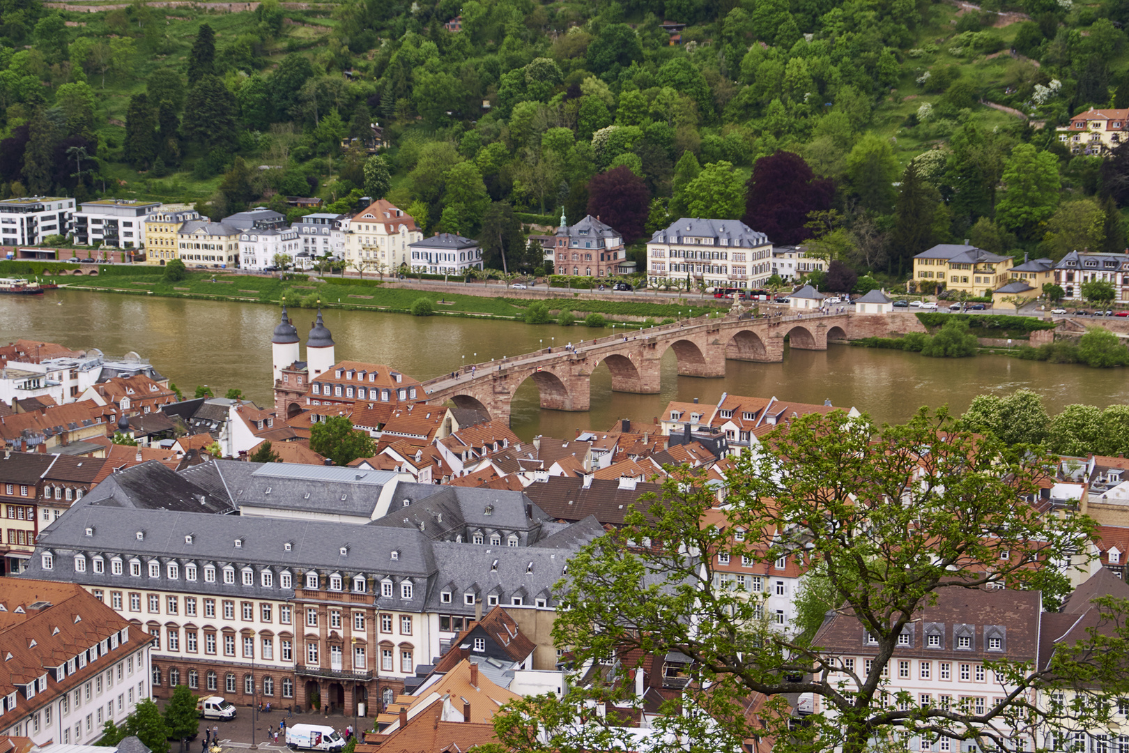 Heidelberg m.alter Brücke