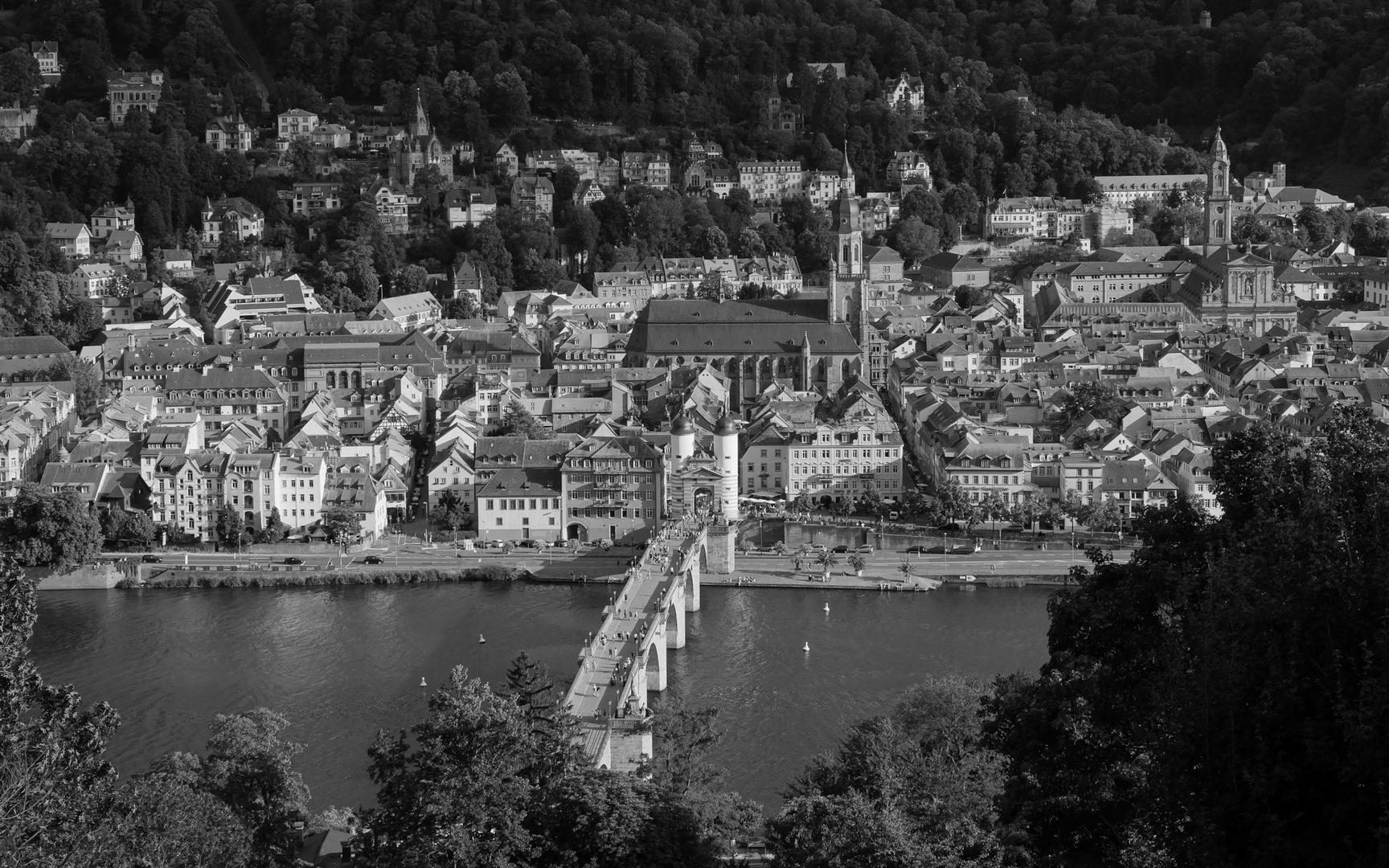 Heidelberg SchwarzWeiss 2019