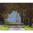 Heidener Herbst