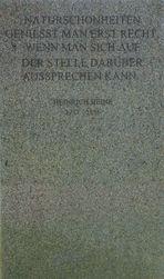 Heinrich Heine und das Gemeinsame