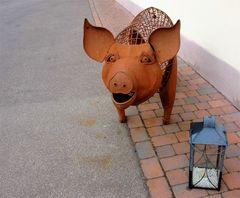 Heiß ist es ... stöhnt das Schweinchen ...