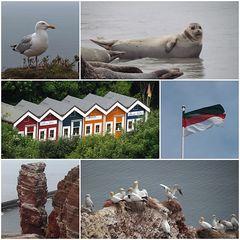 Helgoland 2013